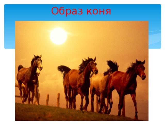 Образ коня