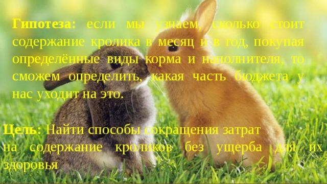 Гипотеза: если мы узнаем, сколько стоит содержание кролика в месяц и в год, покупая определённые виды корма и наполнителя, то сможем определить, какая часть бюджета у нас уходит на это. Цель: Найти способы сокращения затрат на содержание кроликов без ущерба для их здоровья .