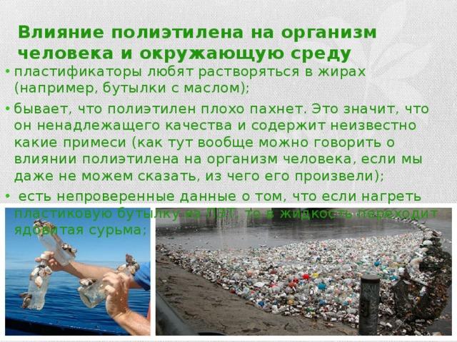 Влияние полиэтилена на организм человека и окружающую среду