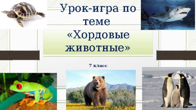 Урок-игра по теме  «Хордовые животные» 7 класс