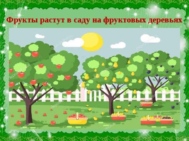 Фрукты растут в саду на фруктовых деревьях
