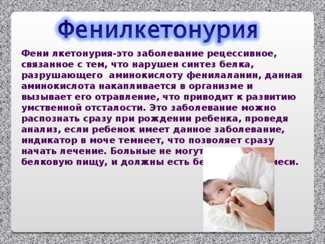 Фени лкетонурия-это заболевание рецессивное, связанное с тем, что нарушен синтез белка, разрушающего аминокислоту фенилаланин, данная аминокислота накапливается в организме и вызывает его отравление, что приводит к развитию умственной отсталости. Это заболевание можно распознать сразу при рождении ребенка, проведя анализ, если ребенок имеет данное заболевание, индикатор в моче темнеет, что позволяет сразу начать лечение. Больные не могут употреблять белковую пищу, и должны есть безбелковые смеси.