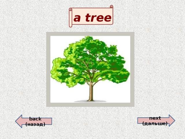 a tree  back (назад) next (дальше)