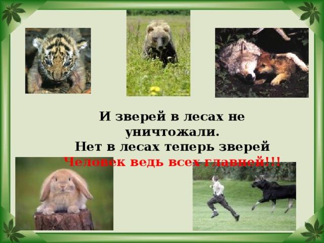 И зверей в лесах не уничтожали. Нет в лесах теперь зверей Человек ведь всех главней!!!