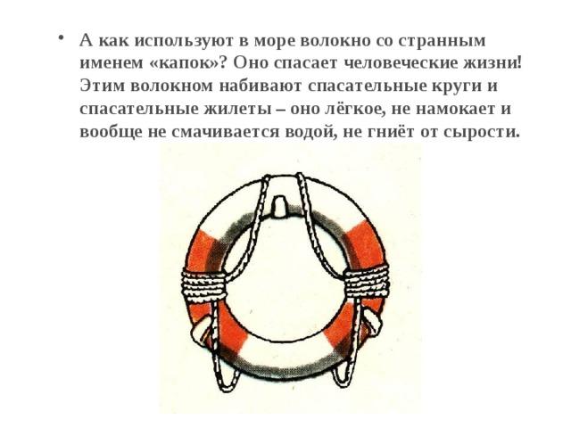 А как используют в море волокно со странным именем «капок»? Оно спасает человеческие жизни! Этим волокном набивают спасательные круги и спасательные жилеты – оно лёгкое, не намокает и вообще не смачивается водой, не гниёт от сырости.