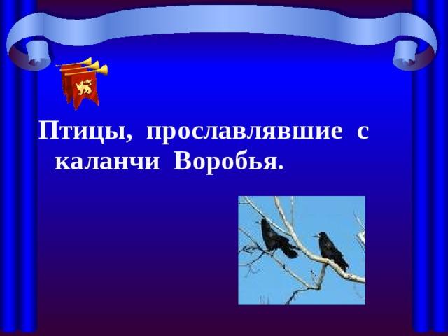 Птицы, прославлявшие с каланчи Воробья.