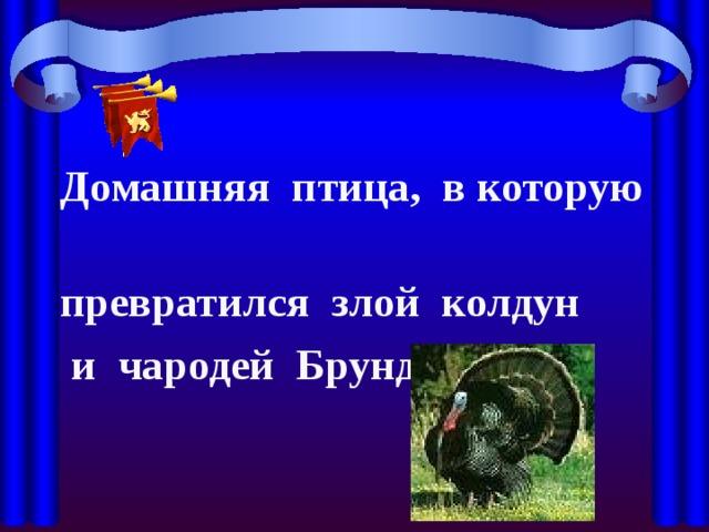 Домашняя птица, в которую превратился злой колдун  и чародей Брундуляк.