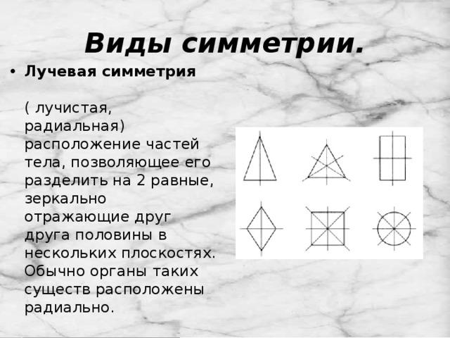 Виды симметрии.
