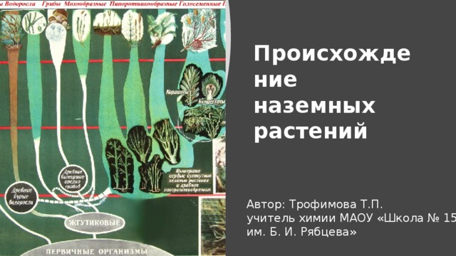 Происхождение наземных растений Автор: Трофимова Т.П. учитель химии МАОУ «Школа № 156 им. Б. И. Рябцева»