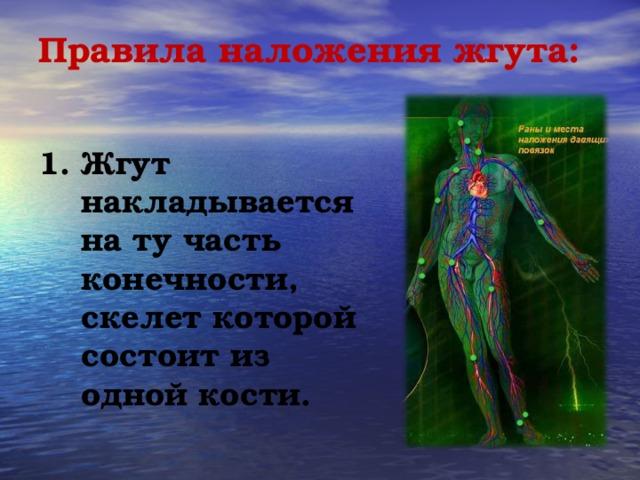 Правила наложения жгута:   1. Жгут накладывается на ту часть конечности, скелет которой состоит из одной кости.
