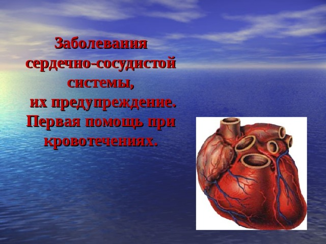 Заболевания сердечно-сосудистой системы,  их предупреждение. Первая помощь при кровотечениях.