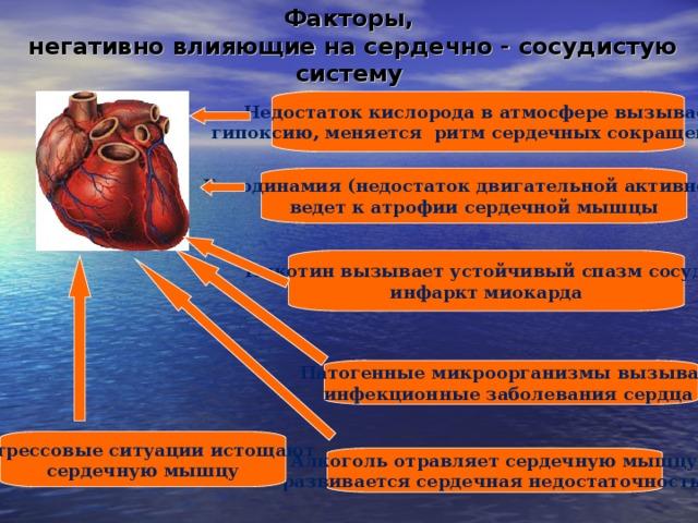 Факторы,  негативно влияющие на сердечно - сосудистую систему  Недостаток кислорода в атмосфере вызывает гипоксию, меняется ритм сердечных сокращений   Гиподинамия (недостаток двигательной активности) ведет к атрофии сердечной мышцы  Никотин вызывает устойчивый спазм сосудов, инфаркт миокарда  Патогенные микроорганизмы вызывают инфекционные заболевания сердца   Стрессовые ситуации истощают сердечную мышцу  Алкоголь отравляет сердечную мышцу, развивается сердечная недостаточность