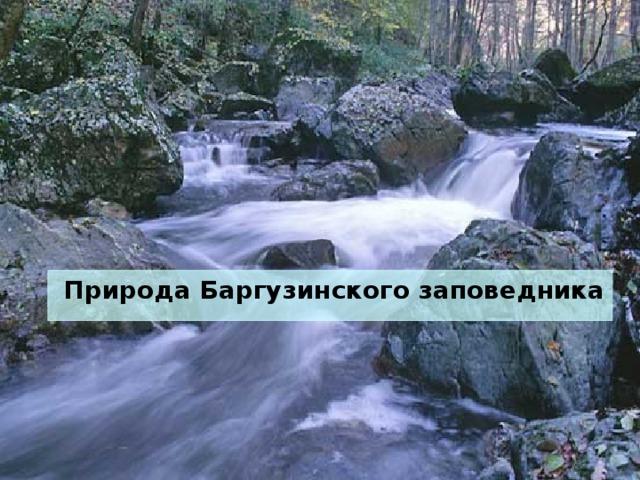Природа Баргузинского заповедника