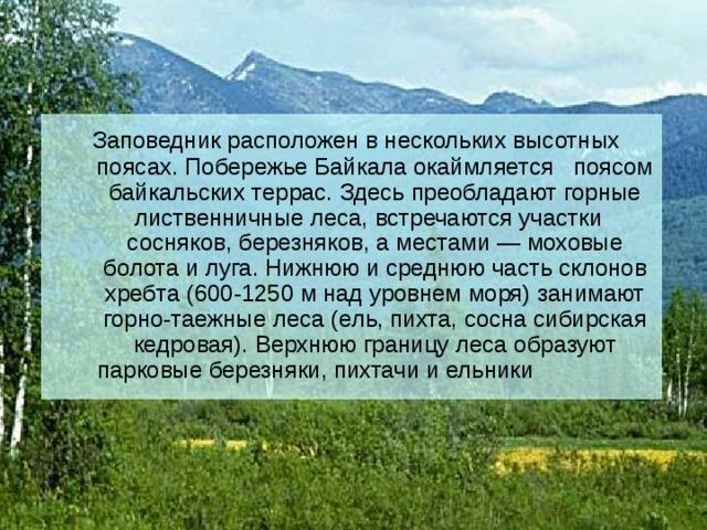 Заповедник расположен в нескольких высотных поясах. Побережье Байкала окаймляется поясом байкальских террас. Здесь преобладают горные лиственничные леса, встречаются участки сосняков, березняков, а местами — моховые болота и луга. Нижнюю и среднюю часть склонов хребта (600-1250 м над уровнем моря) занимают горно-таежные леса (ель, пихта, сосна сибирская кедровая). Верхнюю границу леса образуют парковые березняки, пихтачи и ельники