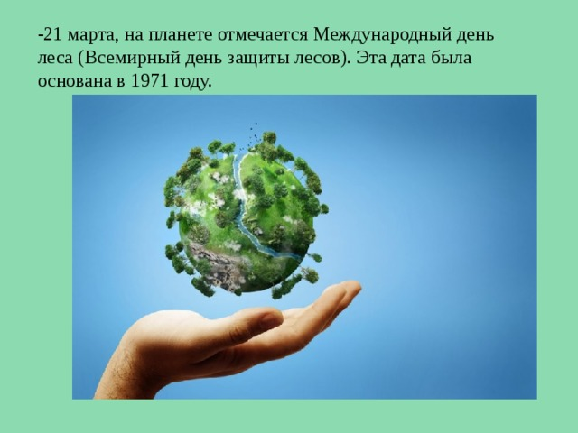 -21 марта, на планете отмечается Международный день леса (Всемирный день защиты лесов). Эта дата была основана в 1971 году.