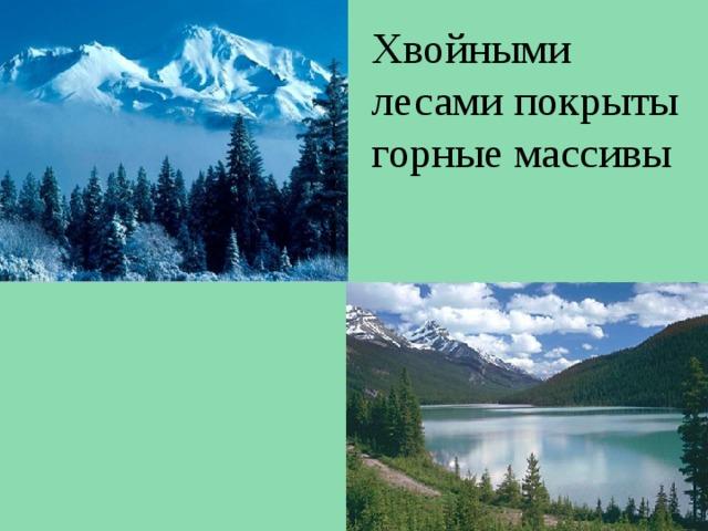Хвойными лесами покрыты горные массивы