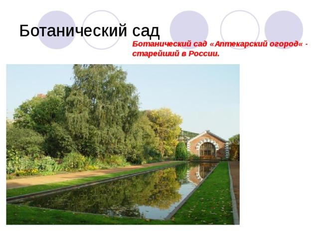 Ботанический сад « Аптекарский огород « - старейший в России.