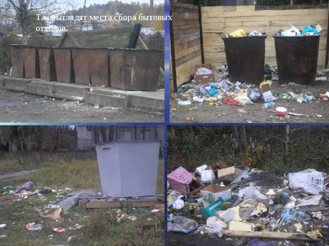 Так выглядят места сбора бытовых отходов