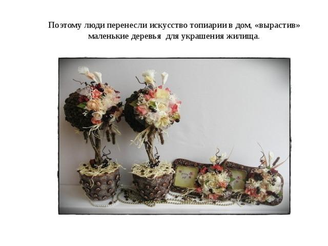 Поэтому люди перенесли искусство топиарии в дом, «вырастив» маленькие деревья для украшения жилища.