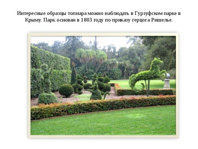 Интересные образцы топиара можно наблюдать в Гурзуфском парке в Крыму. Парк основан в 1803 году по приказу герцога Ришелье.