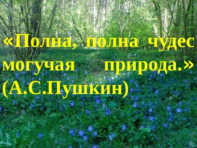 « Полна, полна чудес могучая природа. » (А.С.Пушкин)