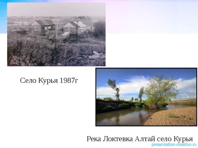 Село Курья 1987г Река Локтевка Алтай село Курья