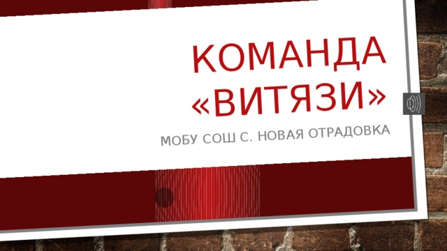 Команда «ВИТЯЗИ» МОБУ СОШ с. Новая Отрадовка