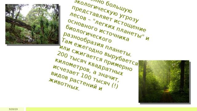 Особенно большую экологическую угрозу представляет истощение лесов –