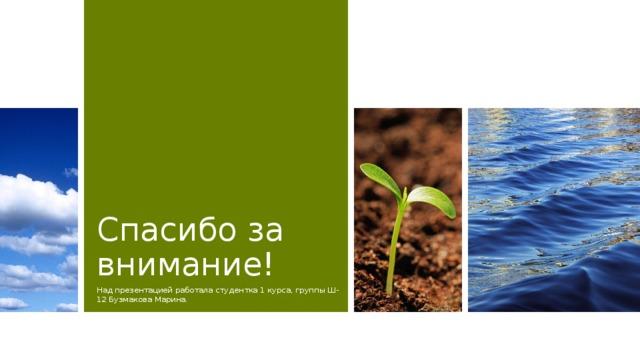 Спасибо за внимание! Над презентацией работала студентка 1 курса, группы Ш-12 Бузмакова Марина.