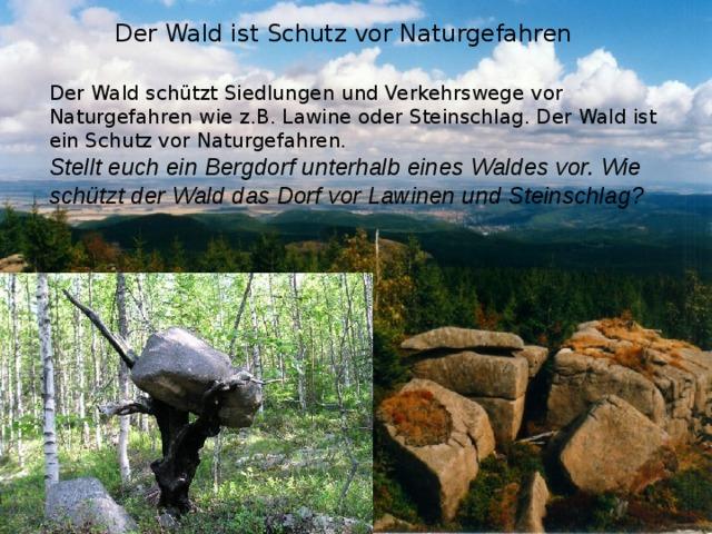 Der Wald ist Schutz vor Naturgefahren Der Wald schützt Siedlungen und Verkehrswege vor Naturgefahren wie z.B. Lawine oder Steinschlag. Der Wald ist ein Schutz vor Naturgefahren. Stellt euch ein Bergdorf unterhalb eines Waldes vor. Wie schützt der Wald das Dorf vor Lawinen und Steinschlag?