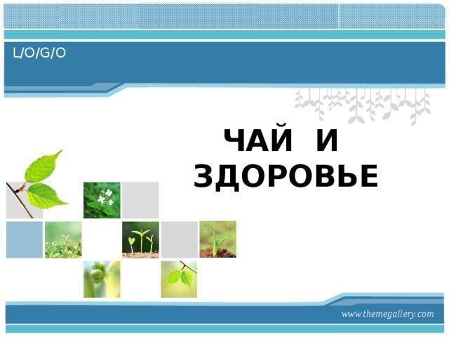 ЧАЙ И ЗДОРОВЬЕ   www.themegallery.com