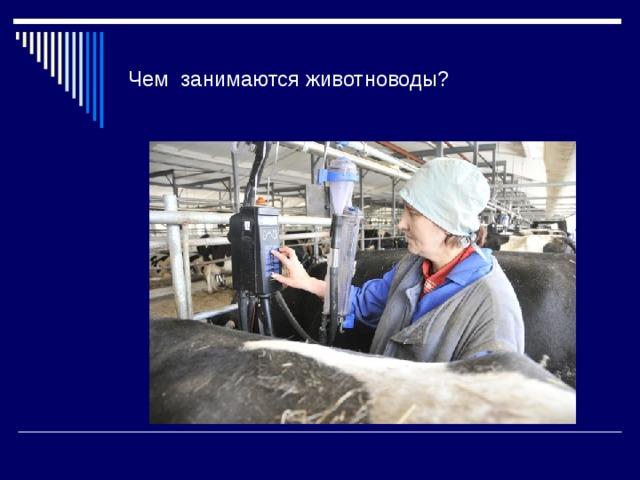 Чем занимаются животноводы?