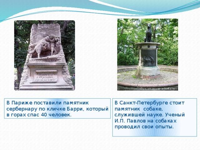 В Париже поставили памятник В Санкт-Петербурге стоит памятник собаке, служившей науке. Ученый И.П. Павлов на собаках проводил свои опыты. сербернару по кличке Барри, который в горах спас 40 человек.