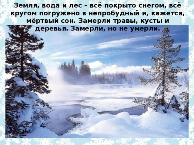 Земля, вода и лес – всё покрыто снегом, всё кругом погружено в непробудный и, кажется, мёртвый сон. Замерли травы, кусты и деревья. Замерли, но не умерли.