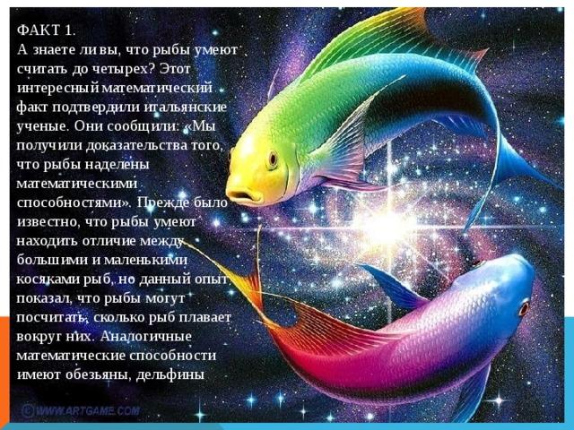 ФАКТ 1. А знаете ли вы, что рыбы умеют считать до четырех? Этот интересный математический факт подтвердили итальянские ученые. Они сообщили: «Мы получили доказательства того, что рыбы наделены математическими способностями». Прежде было известно, что рыбы умеют находить отличие между большими и маленькими косяками рыб, но данный опыт показал, что рыбы могут посчитать, сколько рыб плавает вокруг них. Аналогичные математические способности имеют обезьяны, дельфины А знаете ли вы, что рыбы умеют считать до четырех? Этот интересный математический факт подтвердили итальянские ученые. Они сообщили: «Мы получили доказательства того, что рыбы наделены математическими способностями». Прежде было известно, что рыбы умеют находить отличие между большими и маленькими косяками рыб, но данный опыт показал, что рыбы могут посчитать, сколько рыб плавает вокруг них. Аналогичные математические способности имеют обезьяны, дельфины и некоторые люди с ограниченными возможностями.