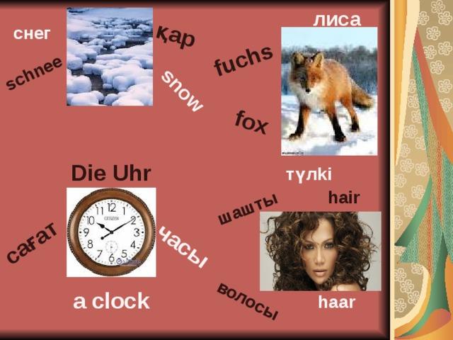 қар snow schnee fuchs fox часы сағат волосы шашты лиса снег Diе Uhr түлki hair a clock haar