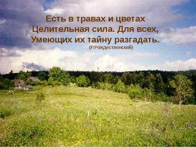 Есть в травах и цветах Целительная сила. Для всех, Умеющих их тайну разгадать.  (Р.Рождественский)
