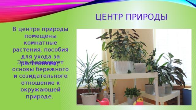 Центр природы В центре природы помещены комнатные растения, пособия для ухода за растениями, Это формирует основы бережного и созидательного отношение к окружающей природе.
