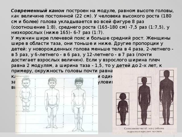 Современный канон построен на модуле, равном высоте головы, как величине постоянной (22 см). У человека высокого роста (180 см и более) голова укладывается во всей фигуре 8 раз (соотношение 1:8), среднего роста (165-180 см) -7,5 раз (1:7,5), у низкорослых (ниже 165)- 6-7 раз (1:7). У мужчин шире плечевой пояс и больше средний рост. Женщины шире в области таза, они тоньше и ниже. Другие пропорции у детей: у новорожденных голова меньше тела в 4 раза, 2-летнего - в 5 раз, у 6-летнего - в 6 раз, у 12-летнего - в 7 раз (почти достигает взрослых величин). Если у взрослого ширина плеч равна 2 модулям, а ширина таза - 1,5, то у детей до 2-х лет, к примеру, окружность головы почти равна окружности грудной клетки, размеры плеч и бедер почти одинаковые. У подростков из-за быстрого роста шеи, ног, рук и туловища вся фигура кажется вытянутой и тонкой.
