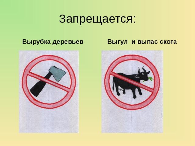 Запрещается: Вырубка деревьев Выгул и выпас скота