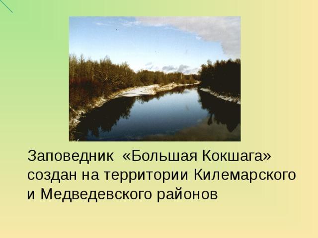 Заповедник «Большая Кокшага» создан на территории Килемарского и Медведевского районов