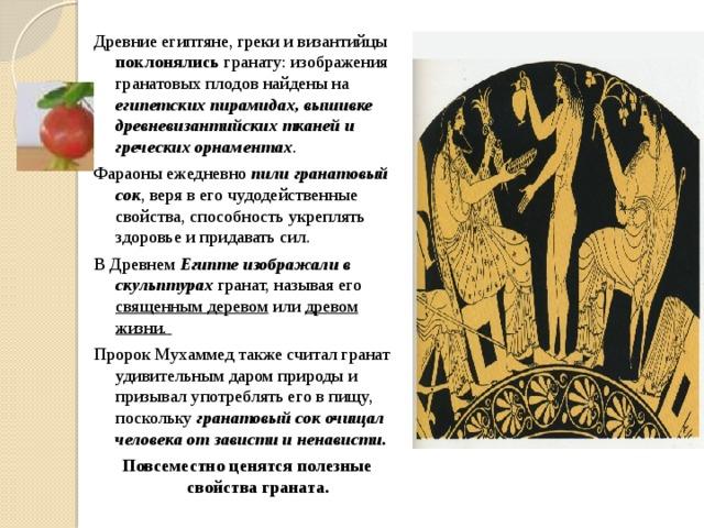 Древние египтяне, греки и византийцы поклонялись гранату: изображения гранатовых плодов найдены на египетских пирамидах, вышивке древневизантийских тканей и греческих орнаментах . Фараоны ежедневно пили гранатовый сок , веря в его чудодейственные свойства, способность укреплять здоровье и придавать сил. В Древнем Египте изображали в скульптурах гранат, называя его священным деревом или древом жизни. Пророк Мухаммед также считал гранат удивительным даром природы и призывал употреблять его в пищу, поскольку гранатовый сок очищал человека от зависти и ненависти. Повсеместно ценятся полезные свойства граната.