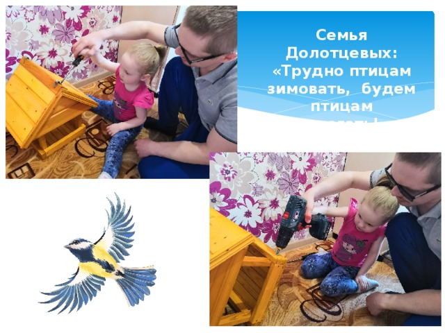 Семья Долотцевых: «Трудно птицам зимовать, будем птицам помогать!»