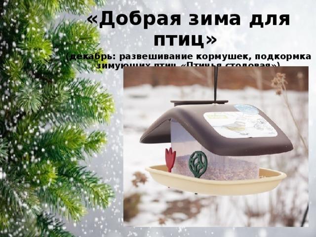 «Добрая зима для птиц» (декабрь: развешивание кормушек, подкормка зимующих птиц «Птичья столовая»)