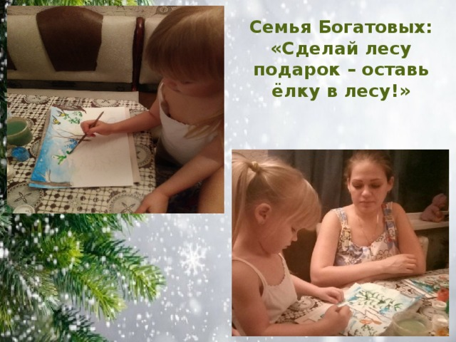 Семья Богатовых: «Сделай лесу подарок – оставь ёлку в лесу!»
