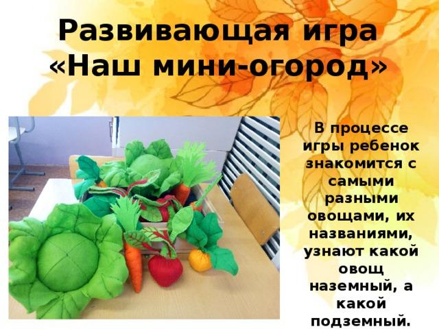 Развивающая игра «Наш мини-огород» В процессе игры ребенок знакомится с самыми разными овощами, их названиями, узнают какой овощ наземный, а какой подземный.