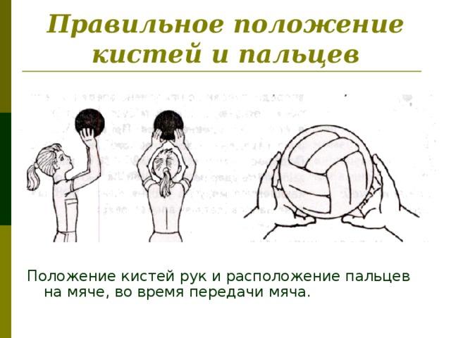 Правильное положение кистей и пальцев Положение кистей рук и расположение пальцев на мяче, во время передачи мяча.