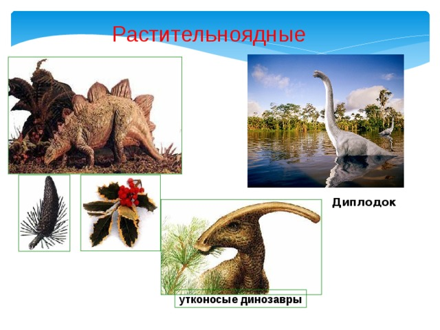Растительноядные Диплодок  утконосые динозавры