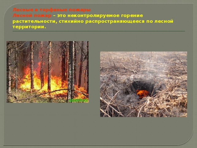 Лесные и торфяные пожары  Лесной пожар – это неконтролируемое горение растительности, стихийно распространяющееся по лесной территории.