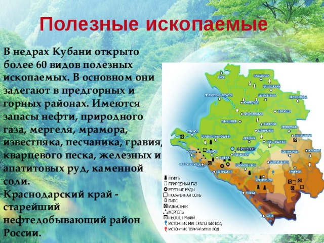 Полезные ископаемые В недрах Кубани открыто более 60 видов полезных ископаемых. В основном они залегают в предгорных и горных районах. Имеются запасы нефти, природного газа, мергеля, мрамора, известняка, песчаника, гравия, кварцевого песка, железных и апатитовых руд, каменной соли.  Краснодарский край - старейший нефтедобывающий район России.